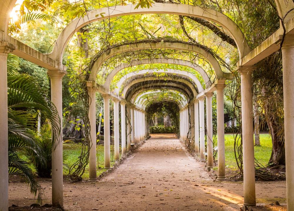 Jard n bot nico de r o de janeiro visitas horario for Casa jardin botanico