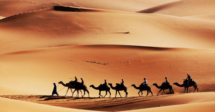 Excursión De 3 Días Al Desierto De Merzouga Desde Marrakech 101viajes