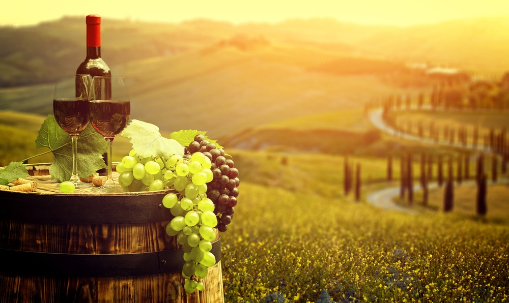Resultado de imagen de vinos italianos